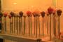 Solitário de Vidro + Botão de Rosa Perfumada - Grande -